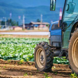 CaseStudy_農業ビジネス