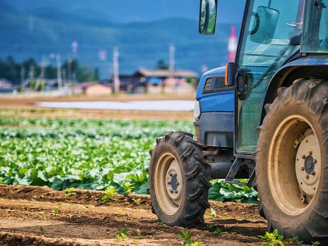 【大手日系保険会社様】農業領域における新規事業企画支援